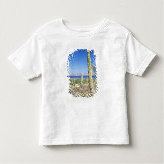 Mexico, Baja California Sur, Mulege, Bahia T-shirt