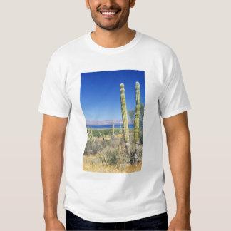 Mexico, Baja California Sur, Mulege, Bahia Tshirts