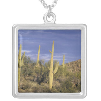 Mexico, Baja del Norte, Catavina Desert National 2 Silver Plated Necklace