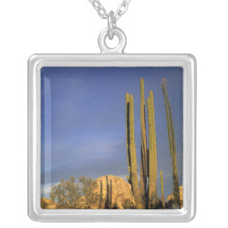 Mexico, Baja del Norte, Catavina Desert National Silver Plated Necklace