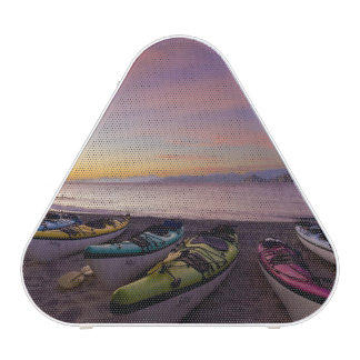 Mexico Baja Sea of Cortez Sea kayaks and Bluetooth Speaker