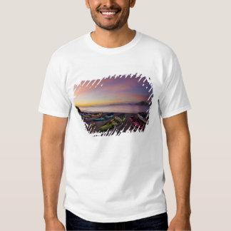 Mexico, Baja, Sea of Cortez. Sea kayaks and T-shirt