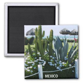 MEXICO CACTI SQUARE MAGNET