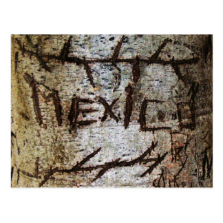 """Mexico"" Carved Tree Graffiti Postcard"