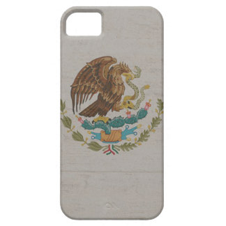 Mexico Flag International iPhone 5 Covers