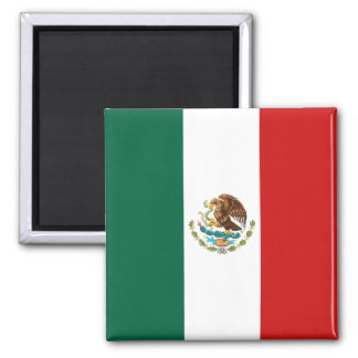 Mexico Flag Magnet