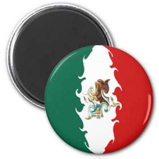 Mexico Gnarly Flag 2 Inch Round Magnet