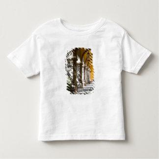 Mexico, Guanajuato state, San Miguel de Allende. Toddler T-shirt