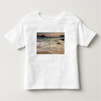Mexico, Guerrero, Zihuatanejo.  Surf along a Toddler T-shirt