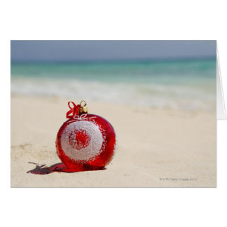 Mexico, Playa Del Carmen, christmas decoration Card