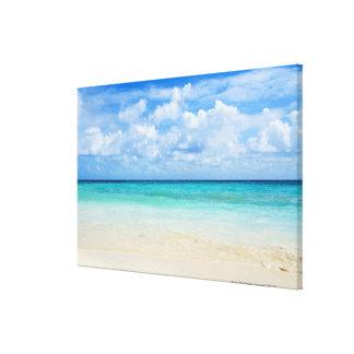Mexico, Playa Del Carmen, tropical beach Gallery Wrap Canvas