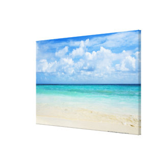 Mexico, Playa Del Carmen, tropical beach Stretched Canvas Prints