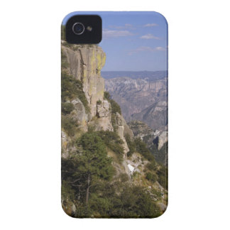 Mexico, State of Chihuahua, Copper Canyon. THIS 2 iPhone 4 Case