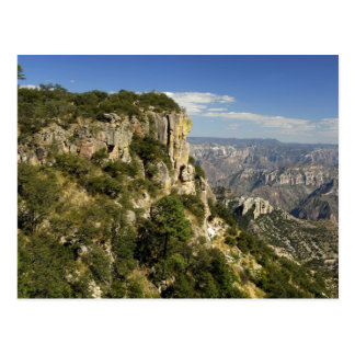 Mexico, State of Chihuahua, Copper Canyon. THIS Postcard