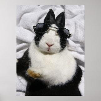 MHRR Dutch black white bunny rabbit summer poster