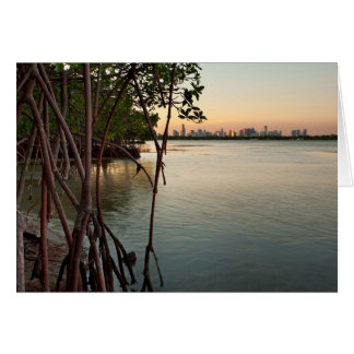Miami and Mangroves at Sunset Card