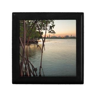 Miami and Mangroves at Sunset Gift Box