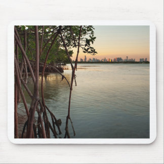 Miami and Mangroves at Sunset Mouse Pad