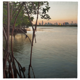 Miami and Mangroves at Sunset Napkin