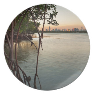 Miami and Mangroves at Sunset Plate