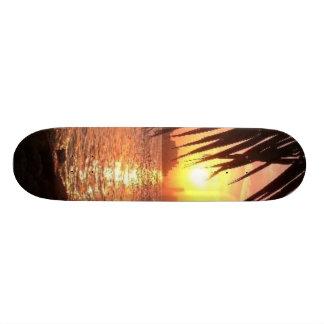 miami-beach custom skateboard