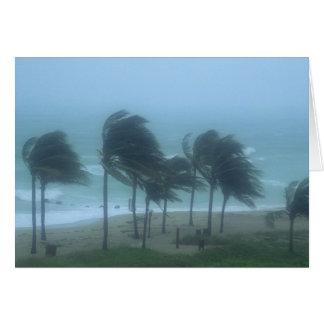 Miami Beach, Florida, hurricane winds lashing Card