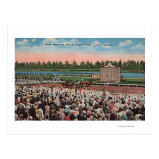 Miami, FL - View of Hialeah Park with Horse Postcard