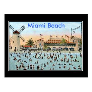 Miami Vintage Postcard Postcard