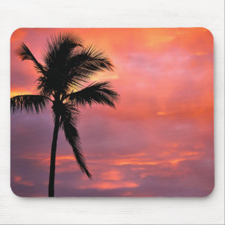 Miami's Sunset Mouse Pad