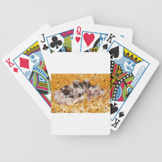 mice-3958 poker deck