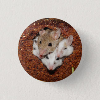 Mice in Bread Pin