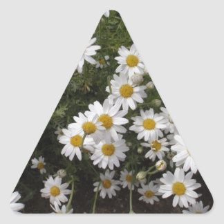 Michaelmas Daisies Triangle Sticker
