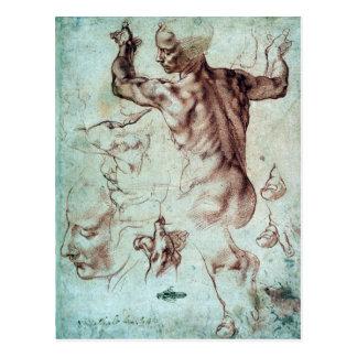 Michelangelo Buonarroti Studies for Libyan Sibyl Postcard
