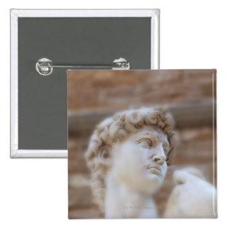 Michelangelo s statue DAVID detail close up view Button