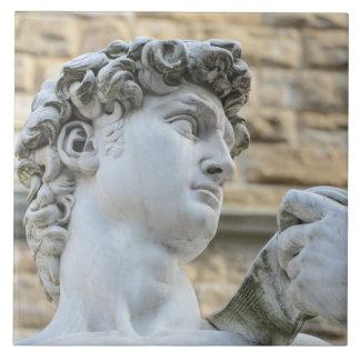 Michelangelo's David, Florence Italy Ceramic Tiles