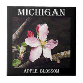Michigan Apple Blossom Tiles