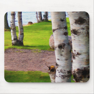 Michigan Birch Trees By Lake Mouse Pad