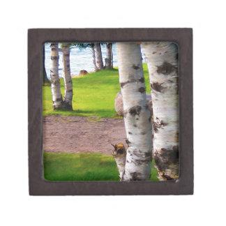 Michigan Birch Trees By Lake Premium Keepsake Box