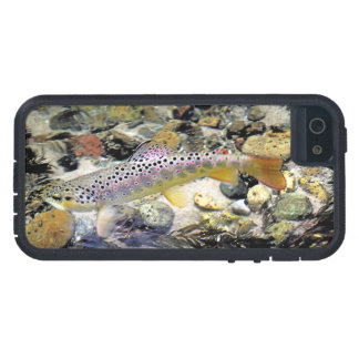 Michigan Brown Trout iPhone 5 Cover