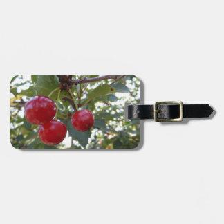 Michigan Cherries Bag Tag