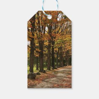 Michigan Fall Autumn Gift Tags