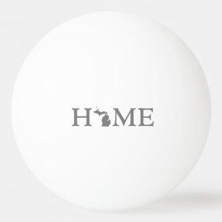 Michigan Home State Ping Pong Ball