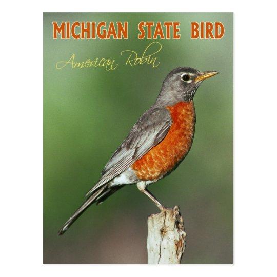 Michigan State Bird American Robin Postcard Zazzle Ca