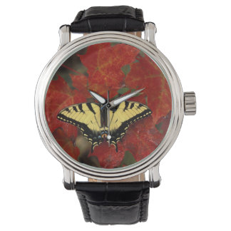 Michigan, Wetmore. Tiger Swallowtail on maple Wristwatch