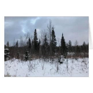 Michigan Winter Landscape Blank Greeting Card
