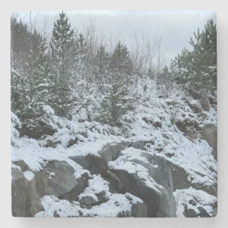 Michigan Winter Landscape Coaster