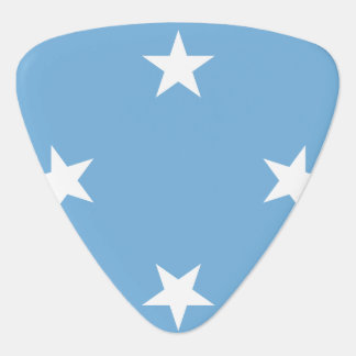 Micronesia Flag Guitar Pick