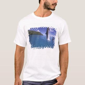 Micronesia, Palau Bottlenose dophin Tursiops T-Shirt
