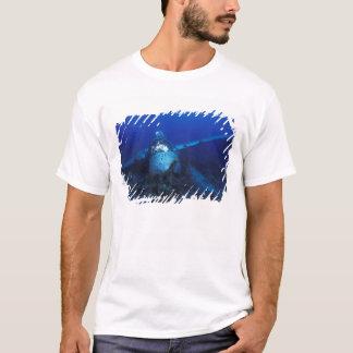 Micronesia, Palau, World Heritage Site. WWII T-Shirt