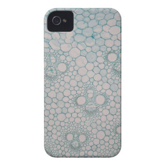 Microscope photo of a bamboo stem. iPhone 4 case